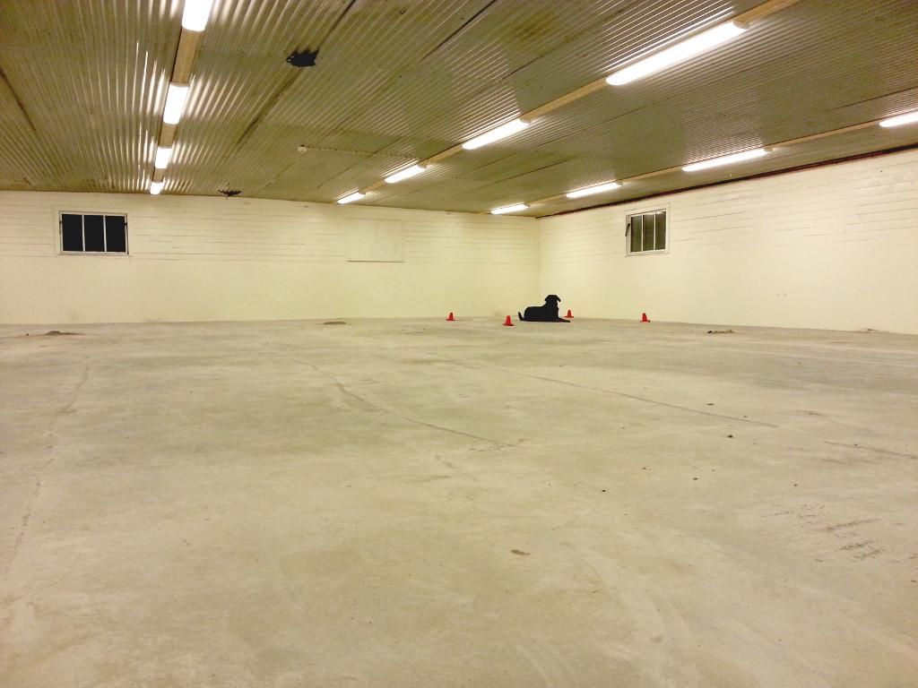 Hallen i januari, nu är det bara mattläggningen kvar, sen öppnar vi!