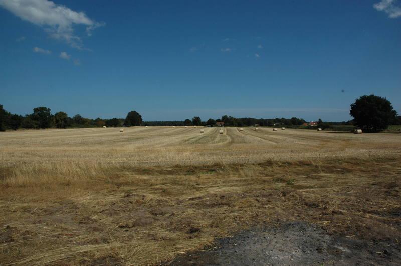 Ett av fälten, delar av fältet ska bli träningsplaner våren 2014