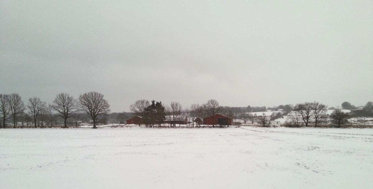 Gården i vinterskrud