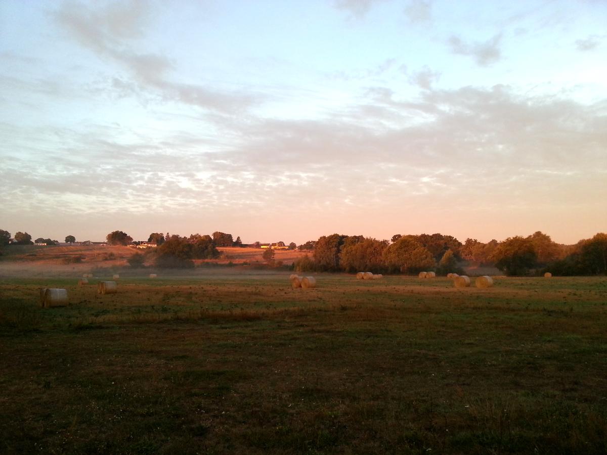Ljuvlig sensommarkväll - utsikt från gården upp mot Olseröds by